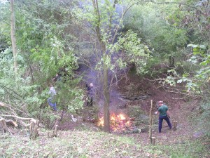 clearing away the scrub during winter and spring ready for bushfire season